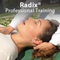 Training for Professionals