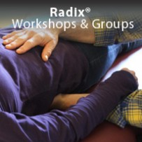 The Radix Workshop Experience
